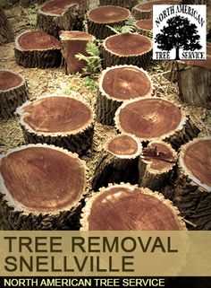 Tree Removal Snellville
