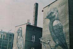 #mural #birds #streetart #analogcamera #zenit #katowice