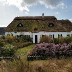 Old Stone Cottage Kerry Tralee Ireland