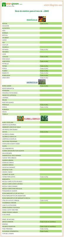 Guía de siembra mes de JUNIO www.elangreen.com