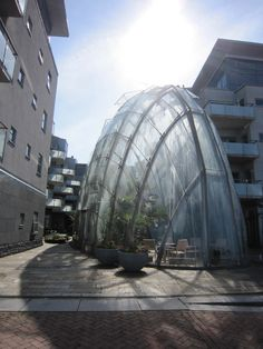 A neighborhood greenhouse in Malmö, Sweden