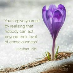 You forgive yourself by realizing that nobody can act beyond their level of consciousness - Eckhart Tolle Eckhart Tolle, Spiritual Wisdom, Spiritual Awakening, Spiritual Guidance, Wisdom Quotes, Life Quotes, Quotable Quotes, Quotes Quotes, Great Quotes