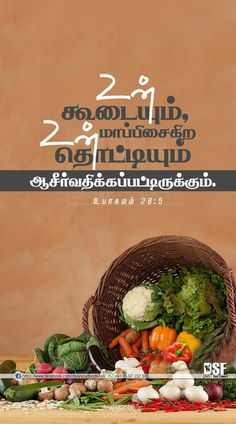 Prayer Quotes, Bible Quotes, Bible Verses, Tamil Bible Words, Blessing Words, Jesus Photo, Bible Verse Wallpaper, Divine Mercy, Arya