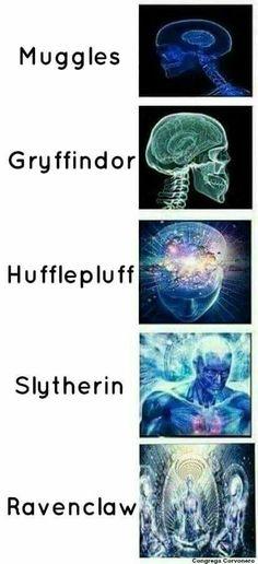 Slytherin and Ravenclaw pride Harry Potter Spells List, Always Harry Potter, Harry Potter Jokes, Harry Potter Characters, Harry Potter Universal, Harry Potter Fandom, Harry Potter Hogwarts, Harry Potter World, Harry Potter Anime