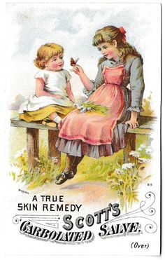 Scott's Carbolated Salve Victorian Trade Card Girls Butterfly Worcester, MA VTC