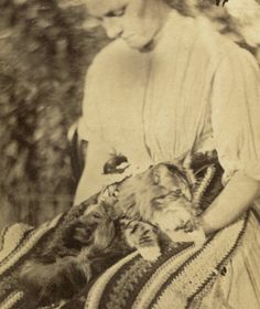 CDV: Victorian CAT PHOTOGRAPH Long Haired Tabby on Crocheted Rug on a Maid's Lap