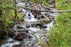 A small creek near Bear lake in Southern Colorado in Cuchara County.