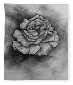 Single Rose Art Print by Faye Anastasopoulou. All prints are professionally printed, packaged, and shipped within 3 - 4 business days. Canvas Art, Canvas Prints, Art Prints, Pencil Sketch Drawing, Drawing Ideas, Fine Art Posters, Bloom Blossom, Thing 1, Single Rose