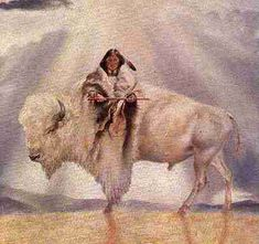 White buffalo is an American bison (American buffalo) that is considered to be sacred signs in several Native American religions, and thus have great spiritual importance in those cultures and is visited for prayer and other religious ceremonies.    www.crystalinks.com/calfwoman.gif
