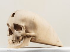 A Fast Death (Supernumerary) by Paul Kaptein