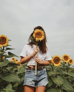 girl, sunflower, and aesthetic kép Sunflower Fields, Sunflower Pics, Sunflower Field Pictures, Yellow Sunflower, Mellow Yellow, Portrait Photography, Hipster Photography, Rain Photography, Friend Photography