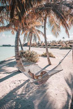 8 Things To Do at Club Med Finolhu Maldives Beach Photography Poses, Maldives Beach, Reef Shark, Snorkelling, Dark Skies, Blue Lagoon, Island Life, My Happy Place, Marine Life