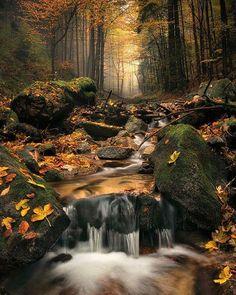 Carpathians, Slovakia photo by Stefan Hefele