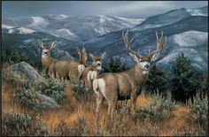 Last Glance Mule Deer Doormat