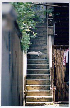 Shamian Island, Guangzhou, China June2004