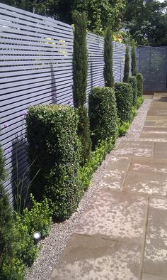 grey fence - this looks exactly like what we are thinking of doing