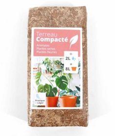 Bouturage de ta Monstera - Jardiner en Ville Stuff Stuff, Composting, Plant Cuttings, Brickwork, Urban