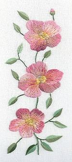 Dog Rose Embroidery Kit SUR