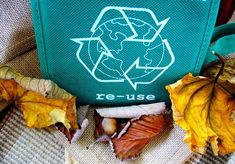 Educators trying to weave the sustainability in our classrooms first need to be environmentally friendly themselves! Yay for low-waste lifestyle goals! Benefits Of Recycling, Wd 40, Car Cleaning Hacks, Ways To Recycle, Reuse Recycle, Reduce Reuse, Go Green, Green Tips, Green Ideas