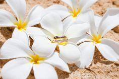 Våra förlovningsringar, fotograferade på Kauai, Hawaii 2012.    #engagement #rings #diamonds #förlovningsring #hawaii  #stefansdotterphotography