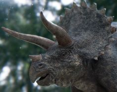 Jurassic world triceratops - Google Search