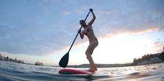perth paddle board - Google Search