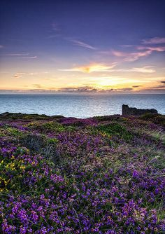 If you were creating a perfect holiday haven from scratch, you'd probably come up with Cornwall. Places In Cornwall, Devon And Cornwall, Cornwall England, Yorkshire England, Yorkshire Dales, Wanderlust, England And Scotland, Beautiful Sunrise, British Isles