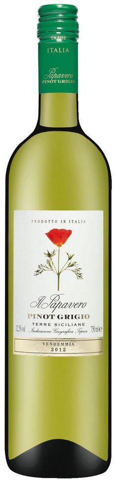 Vollmundig und erfrischend – Der neue Jahrgang von Scipione Giulianis mediterranem Weingenuss aus Sizilien