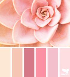 { succulent hues } | image via: @rotblaugelb