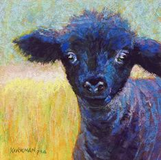 """""""Inky II"""" (pastel, 8x8 inches) sold  A request from a client who saw my print of Inky at the Main Street Fort Worth Arts Festival last month, but preferred an original to a print. I've actually painted this sweet black lamb three times now. Some images bear repeating."""