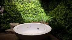 Bucolic Bathing: @Chris Bribach Vertical #Garden wall for California residence living walls, vertic garden, live wall, garden walls, bath, ferns, spa