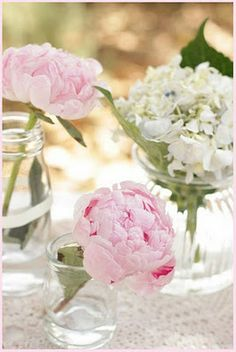single flowers in jars and small vases