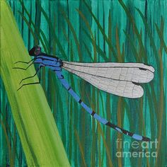"""Blue Dragonfly   12"""" x 12"""" Acrylic Stretched Canvas GALLERY SPECTRUM frame.  $280.00  http://www.sallytiskarice.com/STR/Welcome.html"""