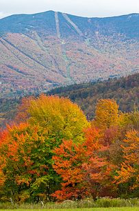 34 Reasons Vermont Is The Most Beautiful Place In The World - BuzzFeed Mobile