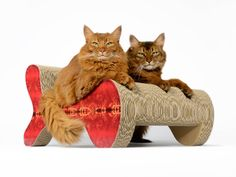 cat-on Molecular Fauteuil - the cat scratcher that cats share with their best friends