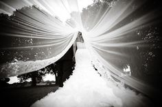 Breathtaking photo under the veil. Mine won't be nearly this long! But a cool photo nonetheless.