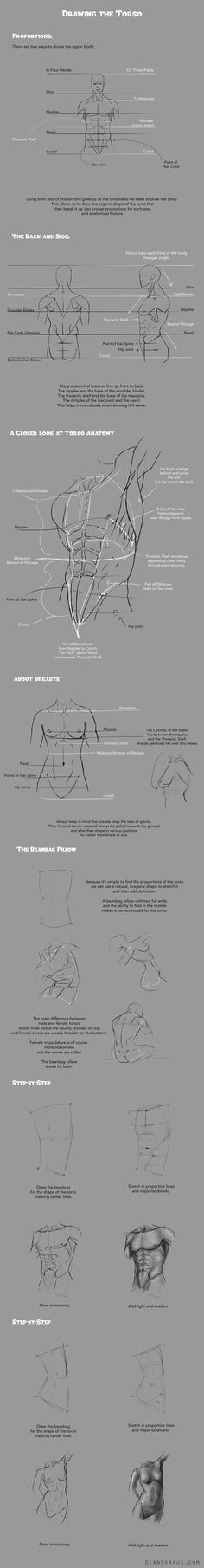 Drawing Torsos Tutorial by satchelsbag