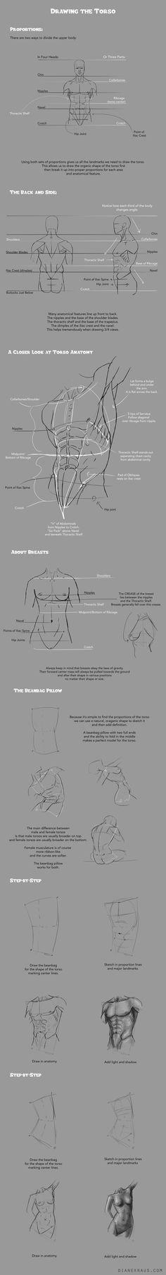 Drawing Torsos Tutorial by satchelsbag
