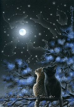 Reminds me of the Warrior cats series cats gazing up at the Star clan in the sky I Love Cats, Crazy Cats, Cute Cats, Warrior Cats, Animal Gato, Photo Chat, Cat Drawing, Beautiful Cats, Beautiful Things