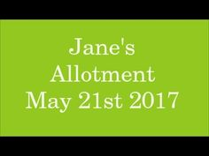 Jane's Allotment May 21st 2017