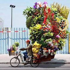 Le fleuriste à portée de main.Mexique-decouverte.com #circuitsurmexique