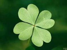 Horseshoe, four-leaf clover, black cats and other good luck charms.