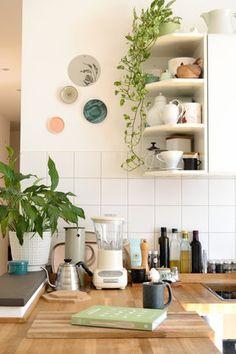 Die 105 besten Bilder von Zimmerpflanzen in 2019 | House decorations ...