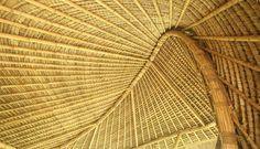 Ibuku Architecture's amazing bamboo structures.