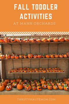 #Fall is always a great time to spend with family but also great for #toddlers and experiencing a different season.