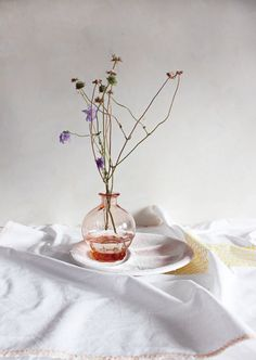 Spring in all it's simplicity by Frieda Mellema, Lab 71
