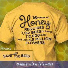 Amazing bees!