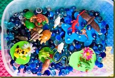 Pond sensory bin - this would be great for Megan, especially if we made it an Ocean bin, with dolphins, whales, fish (clown fish, like Nemo), and other oceanic life, including plants.