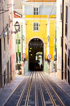 Not Your Standard Guide to Lisbon