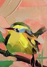 Warbler no. 53 original bird oil painting by Angela Moulton ACEO